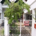 Townhouse For Sale Hua Hin Khao Takiab On Great Location (PRHH2089)